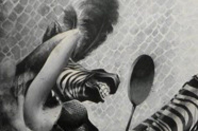 #1 Painting : La féminisation du zèbre par SIT
