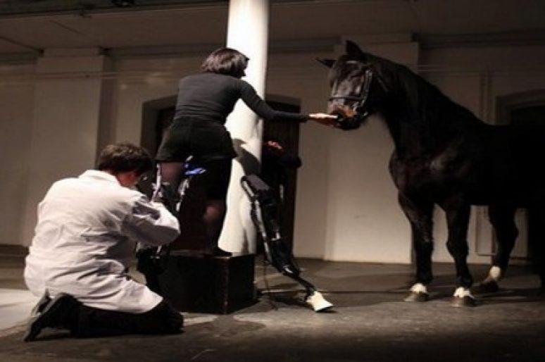 [Contemporary Art] Le cheval dans le sang