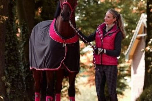 Euro Star, collection Automne/Hiver 2012