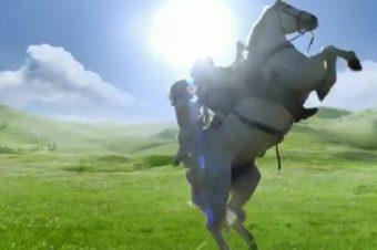 Les chevaux du Super Bowl 2012