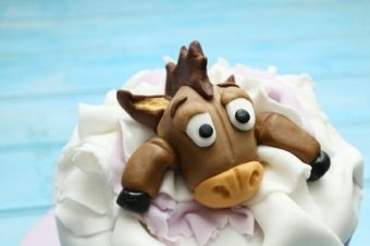 #14 Inspirations de la semaine : Horse Cake