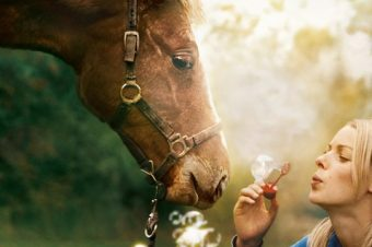 [Cinéma] Ma Bonne Etoile – première bande-annonce du film