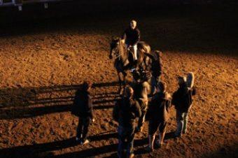 [Cinéma] EXCLUSIF : The Equestrian – la Bande-Annonce du film