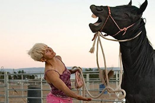 Barbara, l'incroyable femme centaure