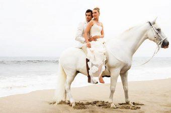 [Equestrian Wedding] Un jour, mon prince viendra
