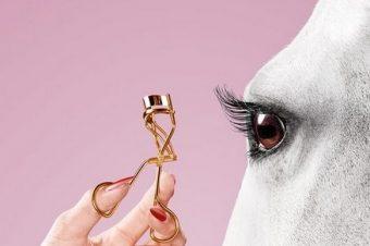 [Beauty Editorial] Thomas Mangold : le cheval est une femme
