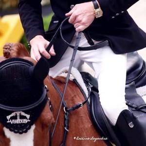 © Roxanne Legendre, Guess who !! @ Saut Hermès 2015…