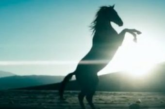 [Music Video] Diamonds, le clip de Rihanna galope chevaux au vent