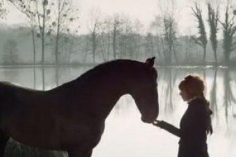 [Music] Mylène Farmer chuchotte à l'oreille d'un cheval espagnol