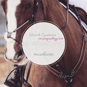 Which equestrian word do you want to learn in French…