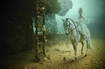 [Photography] A cheval sous les eaux d'Andreas Franke
