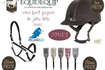 [Concours] De jolis lots à gagner avec Equidequip !