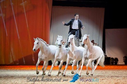 [Cheval Passion 2013 2/2] Le Gala des Crinières d'Or !