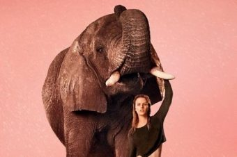 [Animals & Fashion] L'éléphant d'Edun, spring-summer 2013