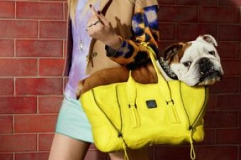 [Animals & Fashion] Harvey Nichols pris le chien dans le sac