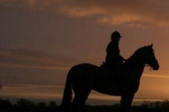 [Equestrian apparel] Horseware Ireland se lance dans le storytelling