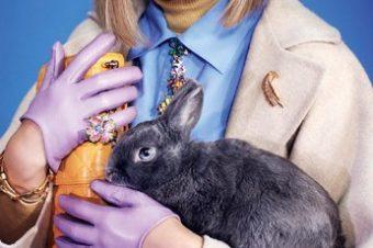 [Fashion Easter] Le lapin Glamour de Naomi Yang !