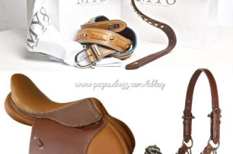 [Horse Clothing] MY8 Horse Equipment : chic, le cuir !