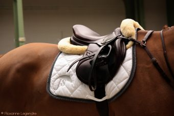 [Photography] Roxanne Legendre : Saddles from Saut Hermès