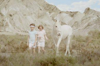 [Video] Le cheval blanc de Karl Erik Brøndbo