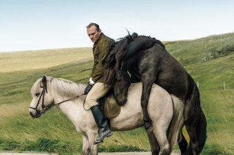 [Equestrian Movie] Des Chevaux et des Hommes