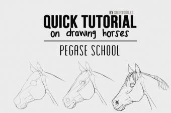 [Pegase School] Comment dessiner un cheval