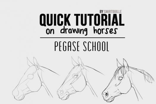 [Pegase School] Comment dessiner un cheval