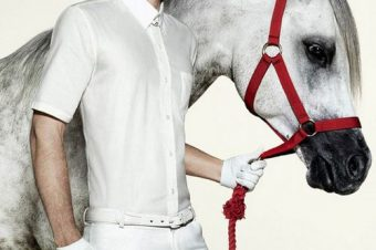 [Fashion Advertising] Le cheval Arabe version Animale