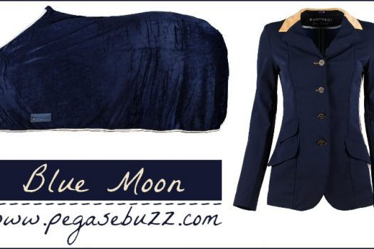 [Equestrian Fashion] Blue moon for a Happy New Year !