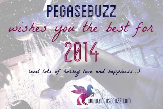 Bonne année 2014 – Happy New Year 2014