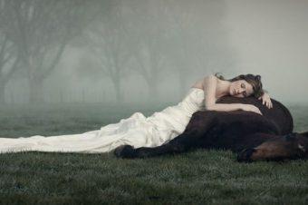 [Equestrian Wedding] Photography : Richard Wood