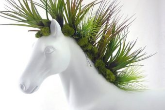 [Equestrian Lifestyle] Plant The Future : White horse