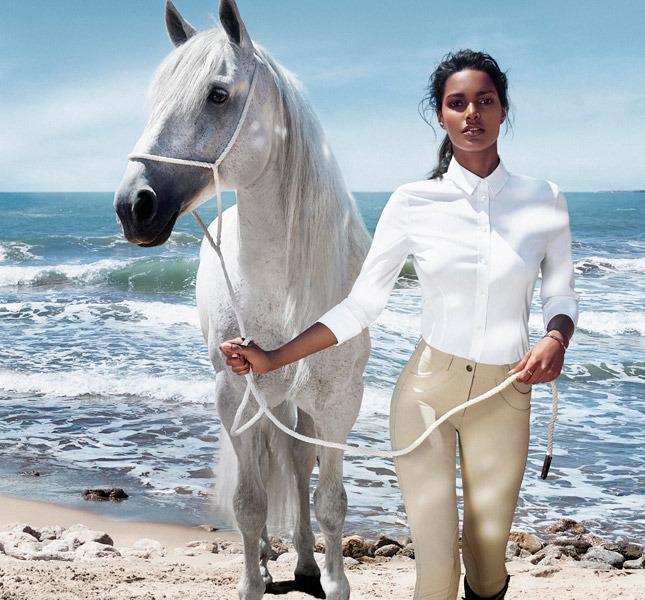 www.pegasebuzz.com   Net A Sporter : Equestrian