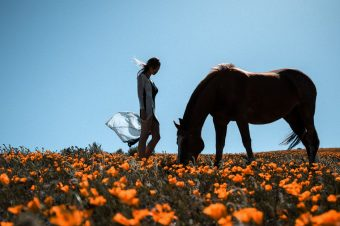 [Fashion Photography] Kesler Tran : horse and liberty