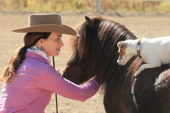 [Buzz] Dally & Spanky : Francesca Carson très à cheval sur les miniatures