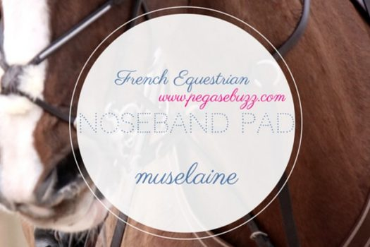 [Instagram] French Equestrian : Noseband Pad