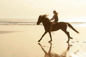 [Fashion Photography] Anna Rosa Krau : Summer Horse