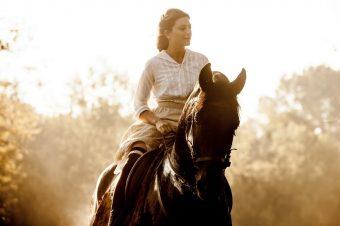 [Cinema] Le cheval et L'Odeur de la Mandarine