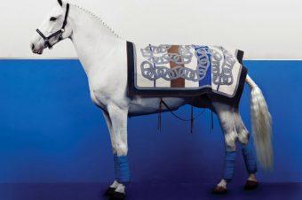 [Fashion Editorial] Le cheval blanc de Vogue Korea
