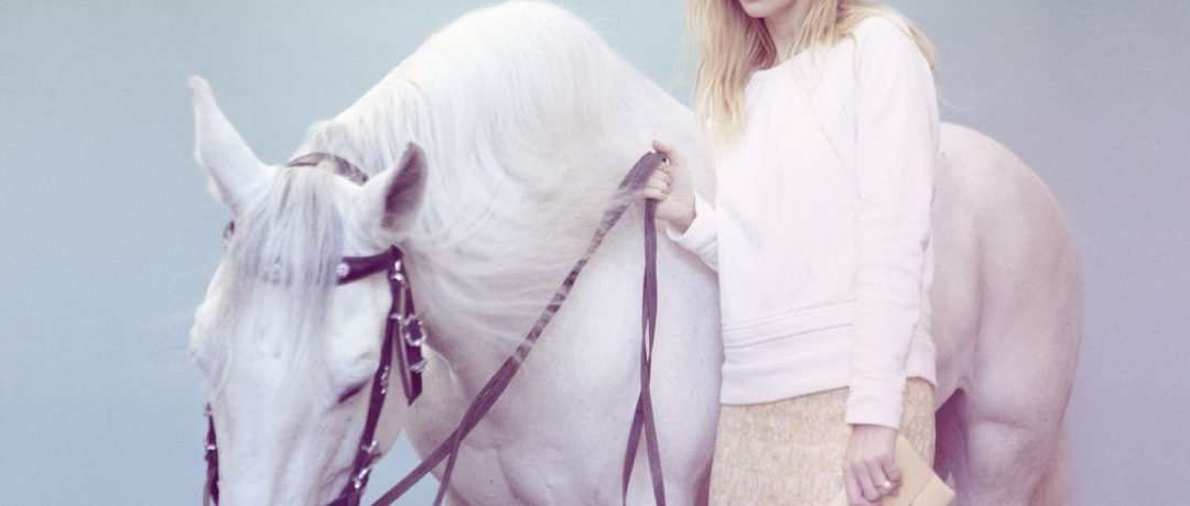 [Equestrian Photography] Petra Kleis : horses and ponies