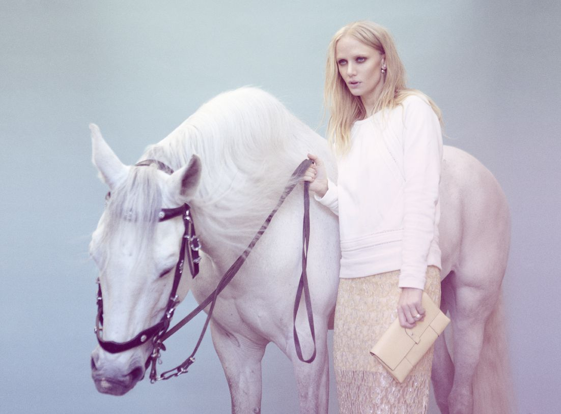 www.pegasebuzz.com | Equestrian photography : Petra Kleis, white horse