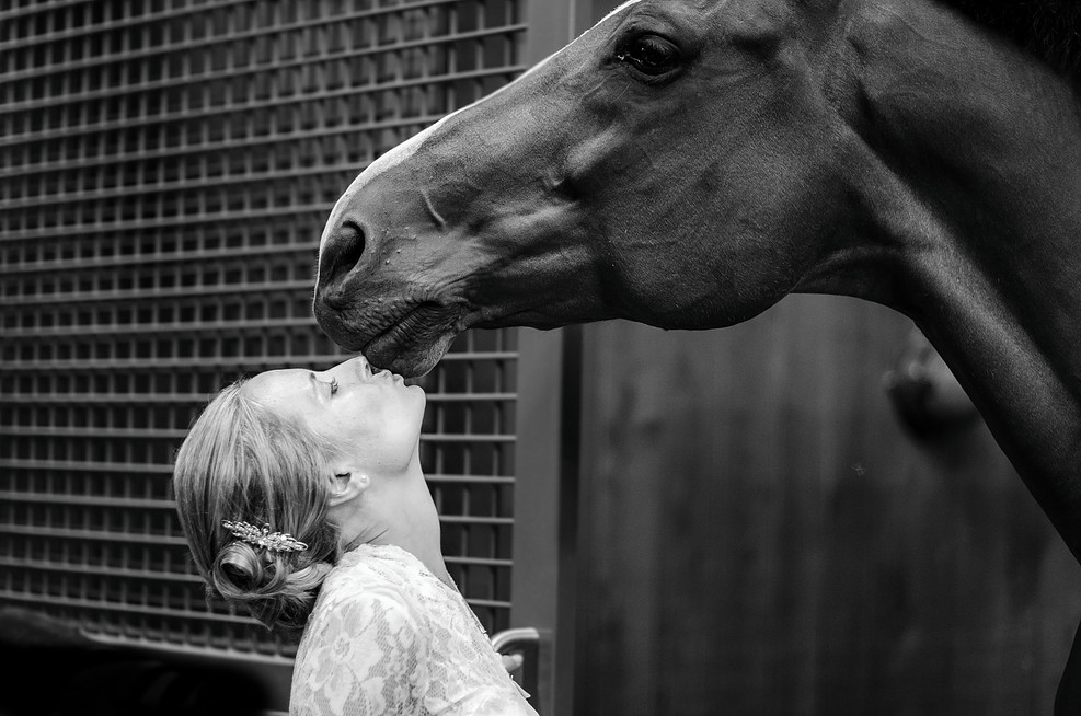 www.pegasebuzz.com | Yoisel Concepcion : Equine Love