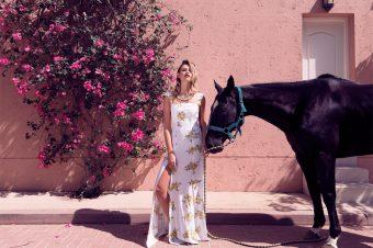 [Editorial] Daniel Allison : Fashion Polo Cup