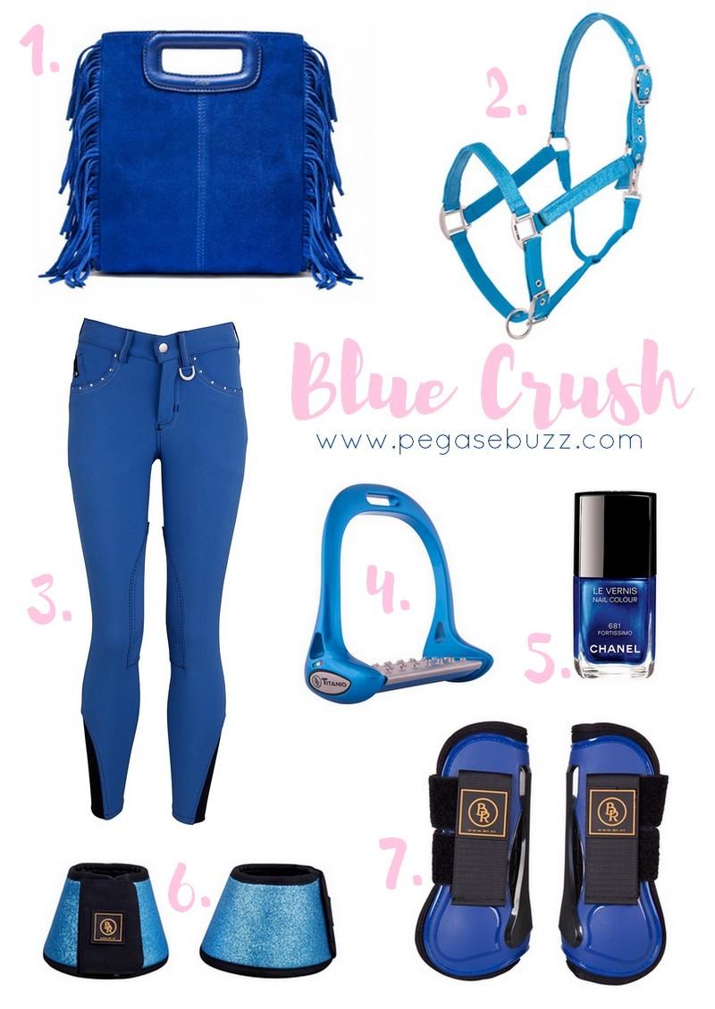 www.pegasebuzz.com | Equestrian Fashion : Blue Crush - Br Riding