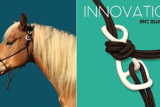 [Communiqué] Innovation : le crochet de sécurité pour licol éthologique de Perez Sellerie