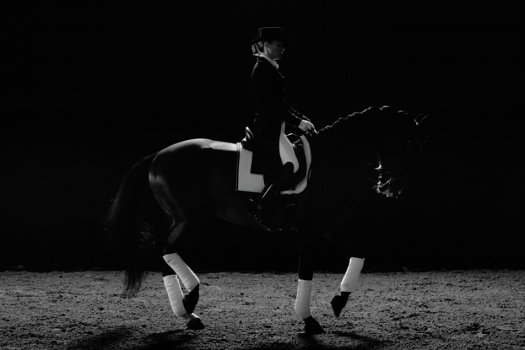 [VIDEO] Gothenburg Horse Show 2016 : the movie