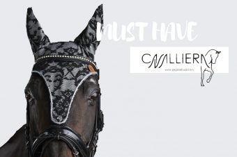 [MUST HAVE] Cavalliera : le bonnet Dignity