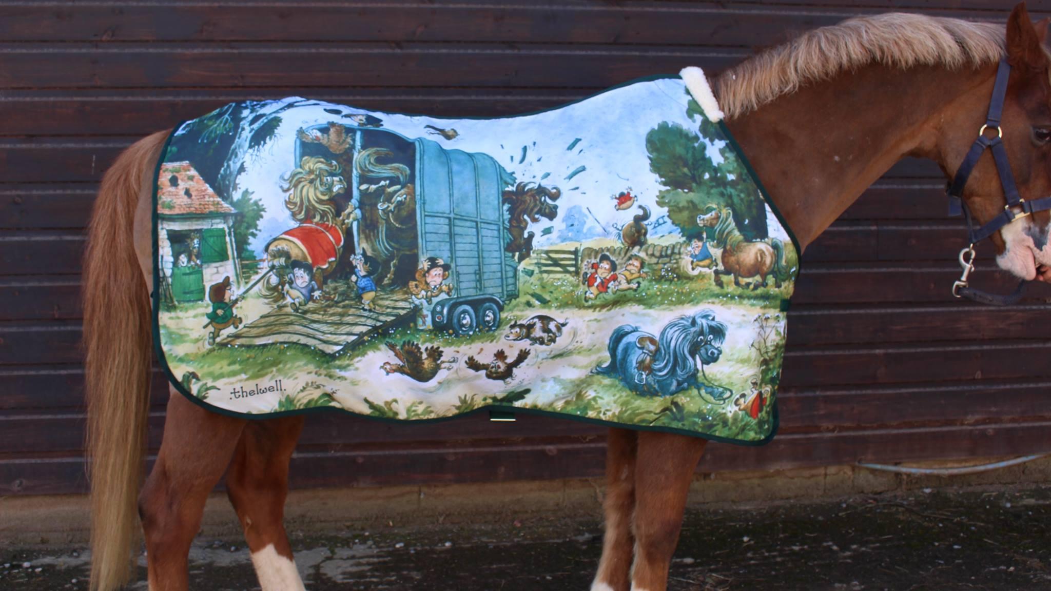 www.pegasebuzz.com | Ri-Dry Clothing : Thelwell Rug