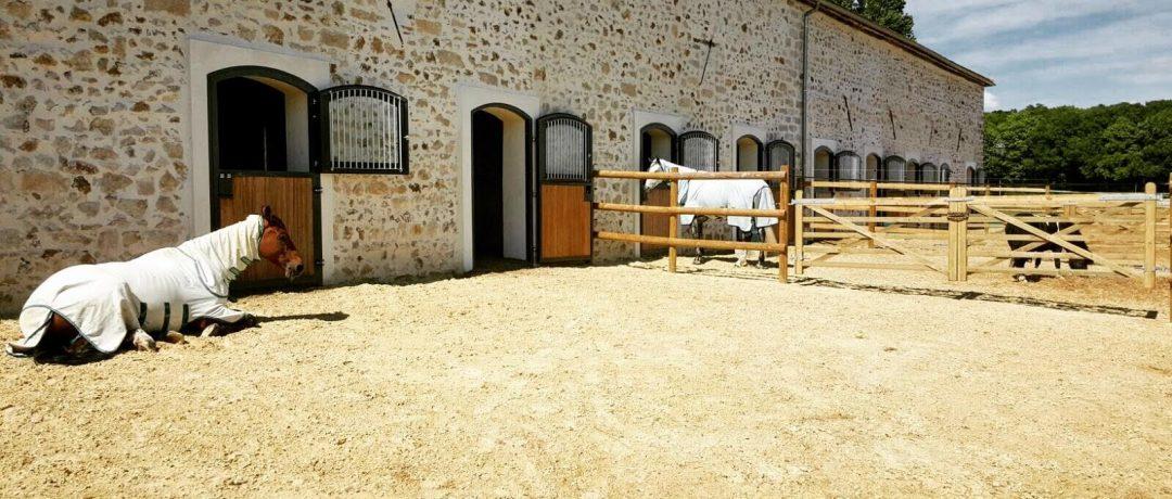 [Dream Barn] Equimov présente… le Haras du Pachavert