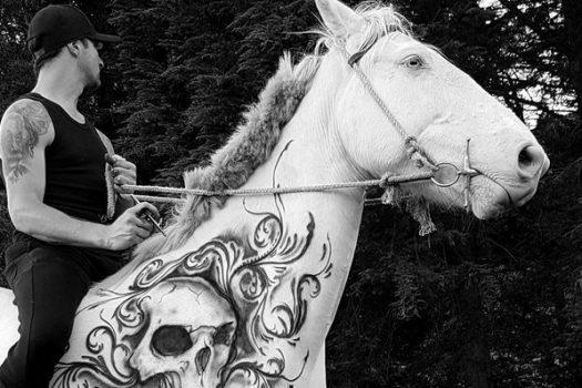 [People] Benjamin Lloyd, l'homme qui tatouait les chevaux